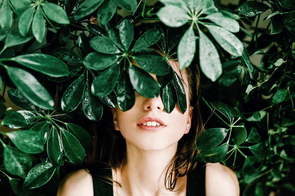 植樹が学校卒業の条件、フィリピンで提出された森林保護のための新法案
