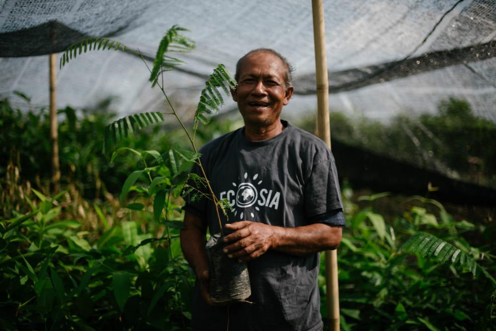 検索のたびに植林される検索エンジン「Ecosia」