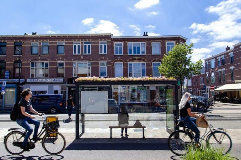 生物多様性を守るハチのバス停