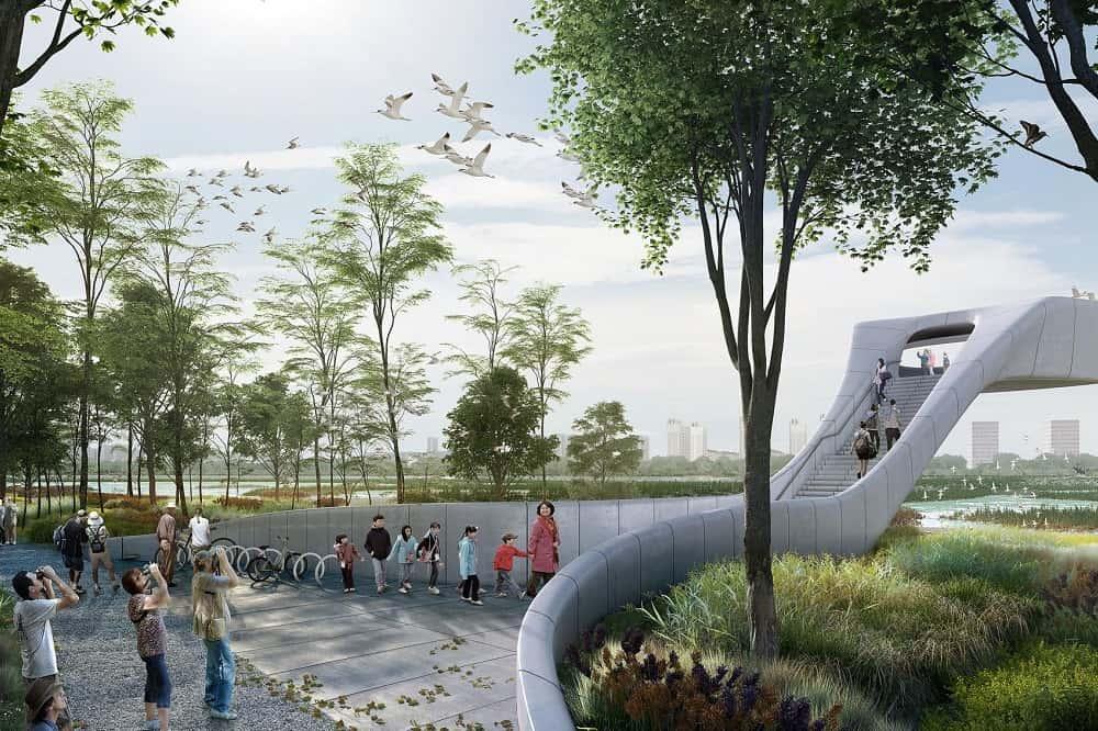 生態系を取り戻す。中国で建設が進む「渡り鳥のための空港」