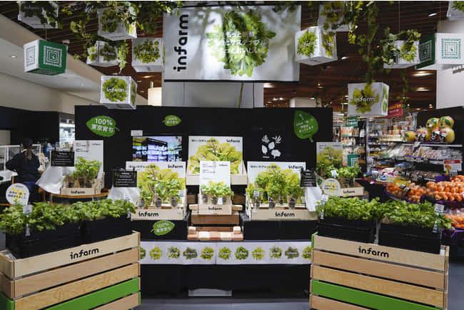 ドイツ発、スーパー店内で野菜を育てる垂直農業テック「Infarm」
