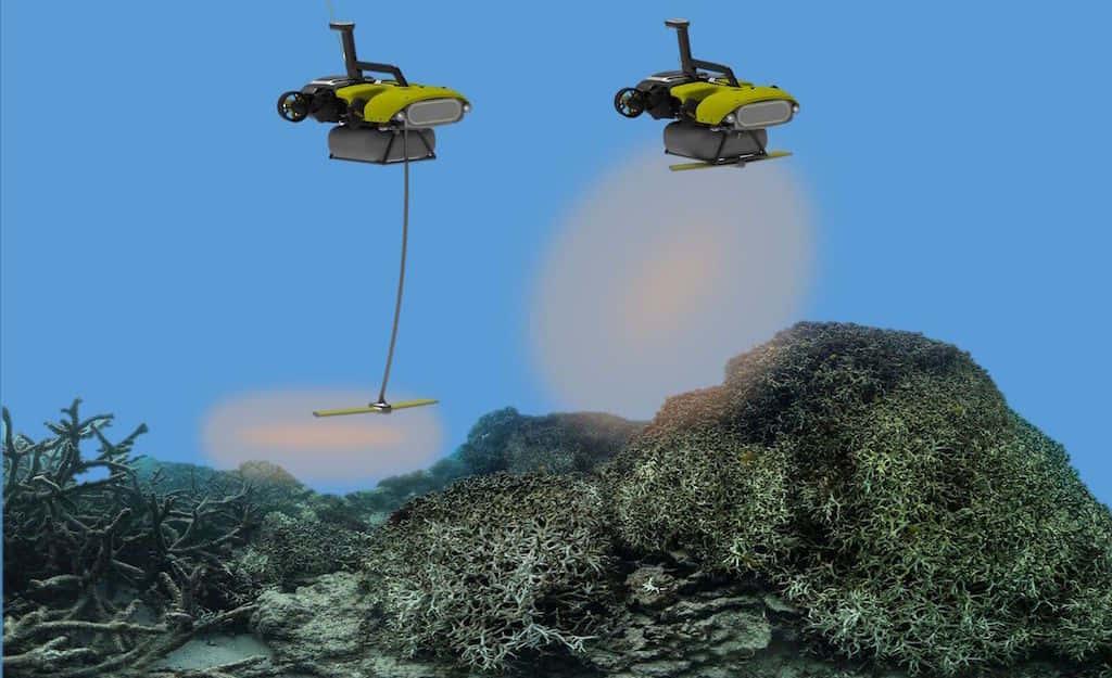 効率は自然繁殖の100倍。サンゴ礁を救う、オーストラリア生まれの海中ロボット