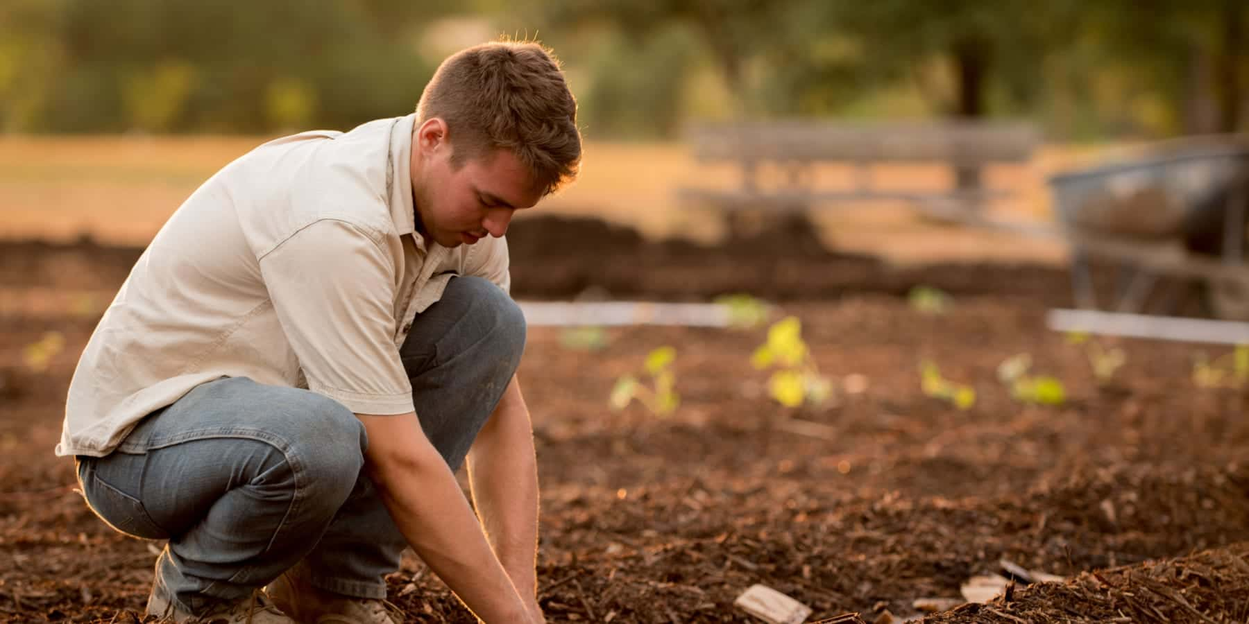 WWFが開始した、食品事業者向けの準備いらずな堆肥化サブスク