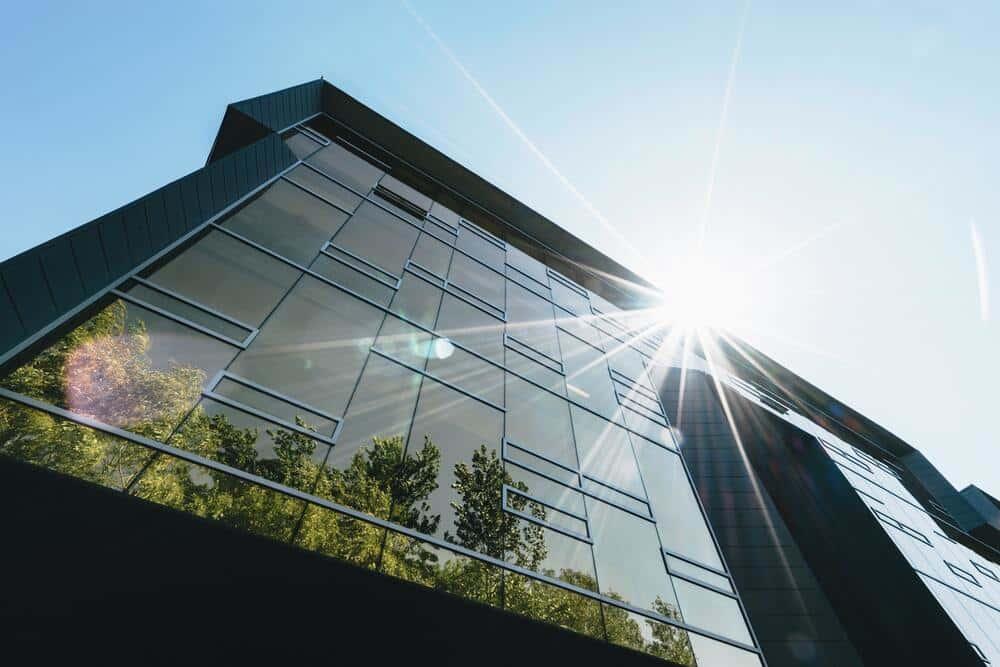 ガラスの代わりになる。米国で研究が進む「透明な木材」