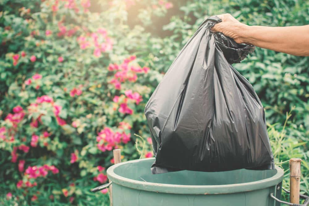 ゴキブリ3億匹が食品廃棄物を処理する中国のリサイクル工場