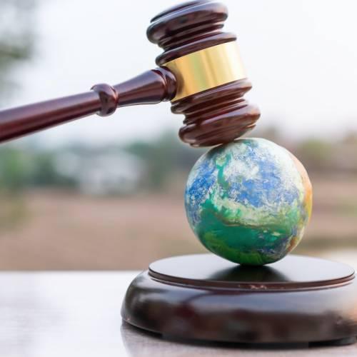 環境破壊が犯罪に。ジェノサイドならぬ「エコサイド」の意味と世界の動きを解説