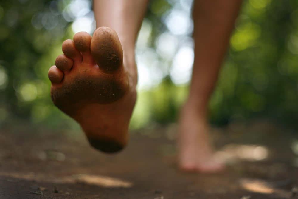 自然を感じ、健康になる。靴を履いて歩いてはいけないラトビアの小道