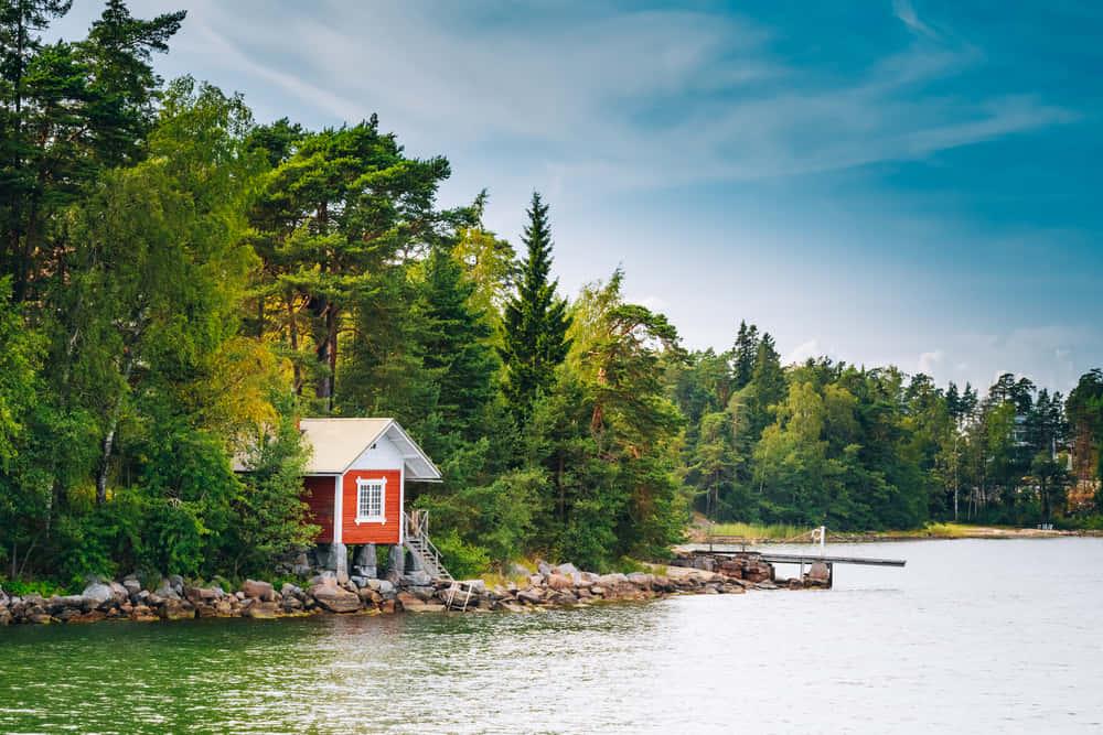 林業の廃棄物をバイオ燃料に。フィンランド技術研究センターの新技術
