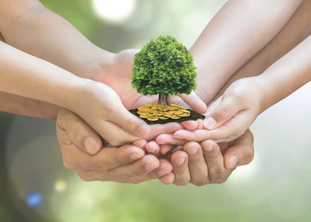 インドのイエスバンクによるSDGs活動に融資できる「グリーン・フューチャー預金」