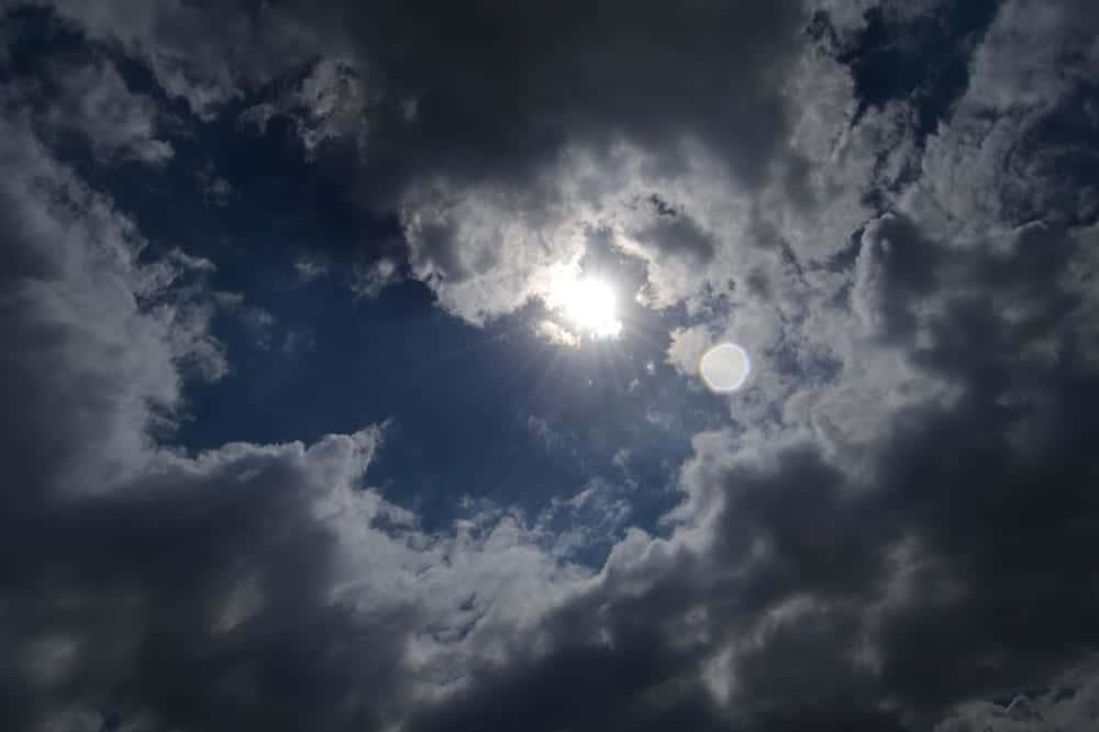 日照条件に左右されない発電を実現する、バクテリア入りの太陽電池