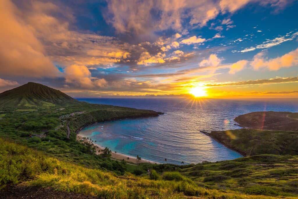消滅の危機にあるハワイの言語を学べるAR学習アプリ「Drops」